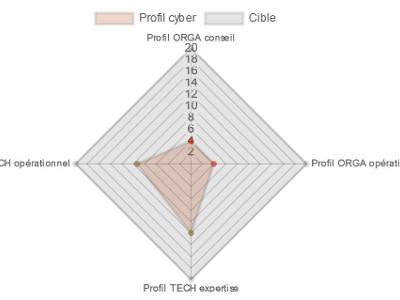 Questionnaire profil cyber